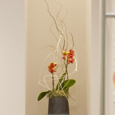 interior design Vancouver dental office flower arrangement
